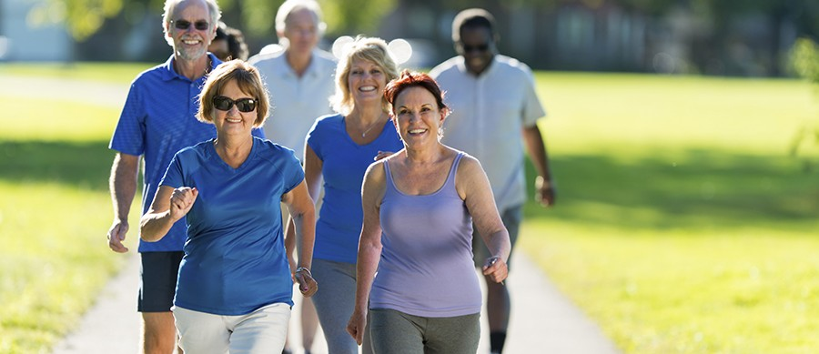 """Join us Sunday in Kingston, NY to """"Walk & Talk With a Doc"""""""