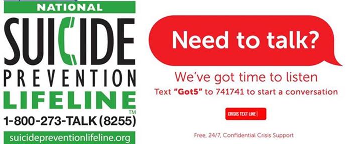 National Suicide Prevention Lifeline at 1-800-273-8255 (en español 1-888-628-9454)